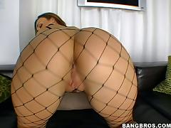 Perfect ass of Krystal Jordan is covered in fishnet and dicked