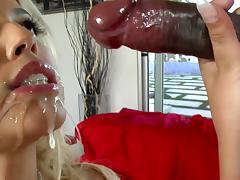 Interracial banging with blonde Bridgette B
